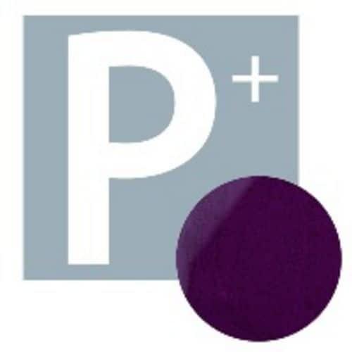 P+ Gel Polish Purple Rain