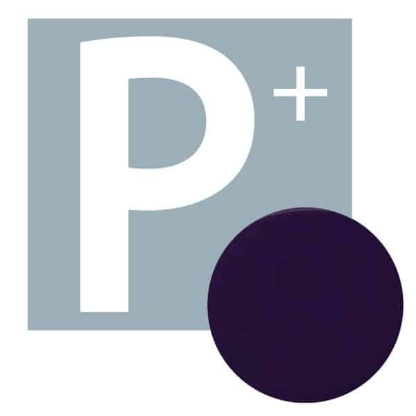 P+ Gel Polish Luxury Liner