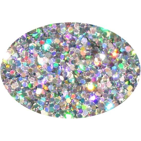 Glitter Holo Silver 025Hex
