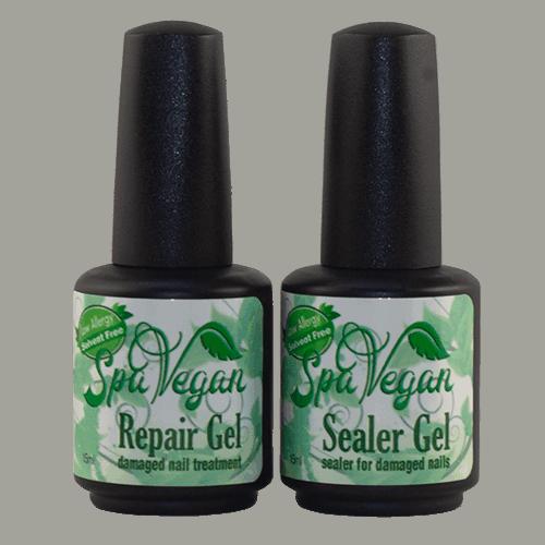 Repair & Sealer System