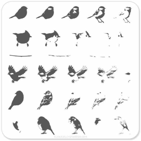 Itty Bitty Birds