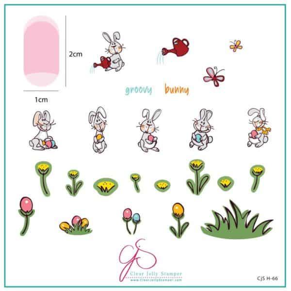 Groovy Bunny